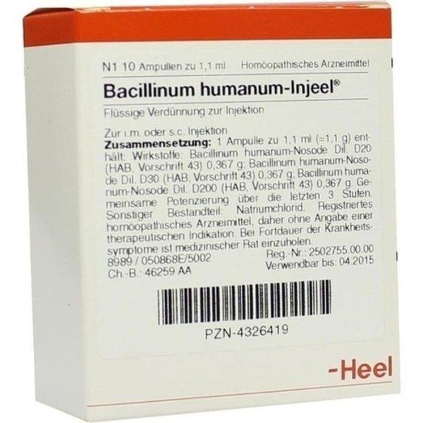BACILLINUM humanum Injeel Ampullen 10 St
