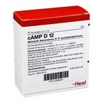 CAMP D 12 Ampullen 10 St