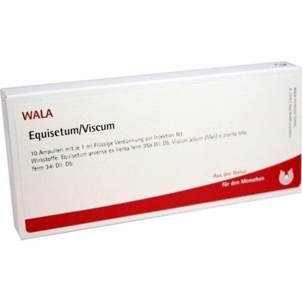 EQUISETUM/VISCUM Ampullen 10X1 ml
