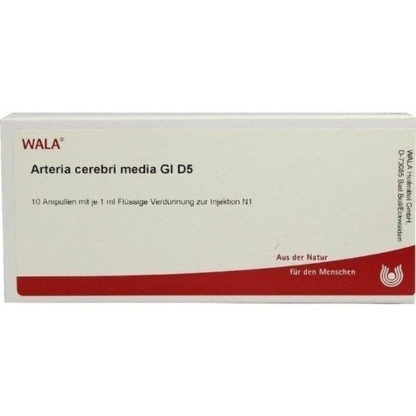 ARTERIA CEREBRI media GL D 5 Ampullen 10X1 ml
