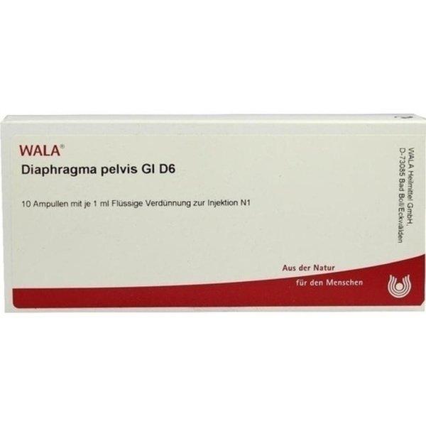 DIAPHRAGMA PELVIS GL D 6 Ampullen 10X1 ml