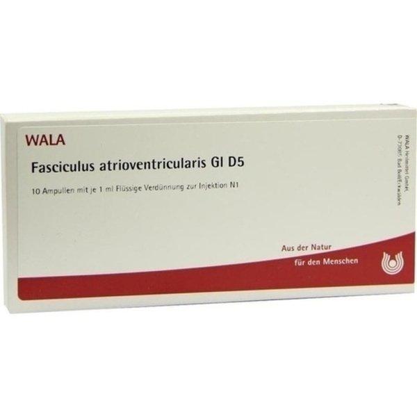 FASCICULUS ATRIOVENTR. GL D 5 Ampullen 10X1 ml
