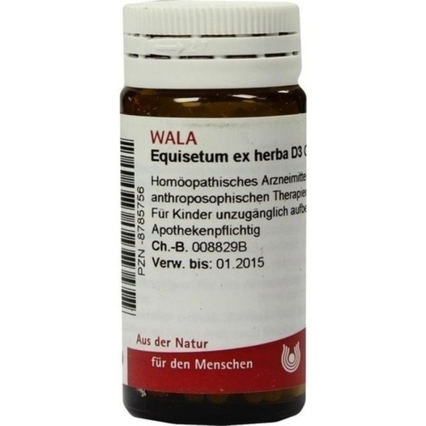 EQUISETUM EX Herba D 3 Globuli 20 g