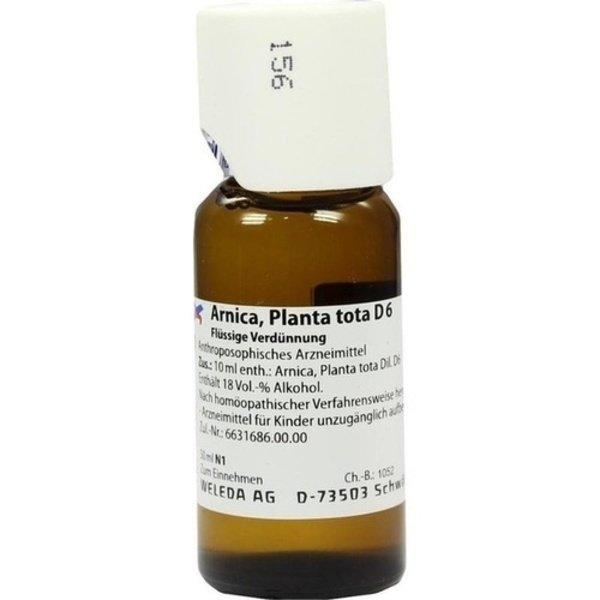 ARNICA PLANTA tota D 6 Dilution 50 ml