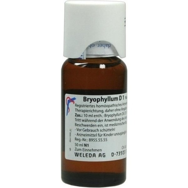 BRYOPHYLLUM D 1 Dilution 50 ml
