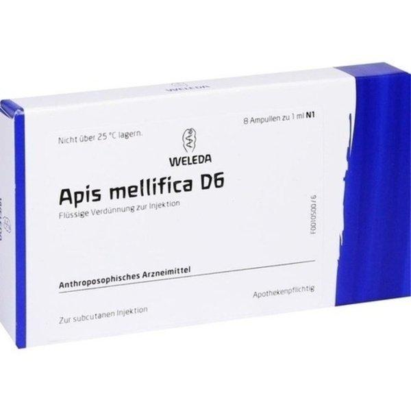 APIS MELLIFICA D 6 Ampullen 8 St