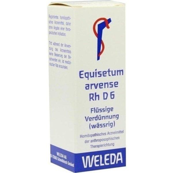 EQUISETUM ARVENSE Rh D 6 Dilution 20 ml