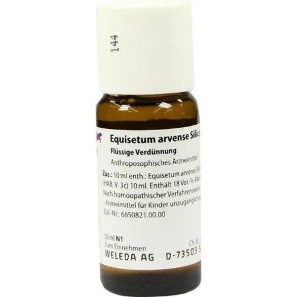 EQUISETUM ARVENSE Silicea cultum D 3 Dilution 50 ml