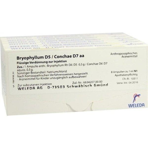 BRYOPHYLLUM D 5/Conchae D 7 Ampullen 48X1 ml