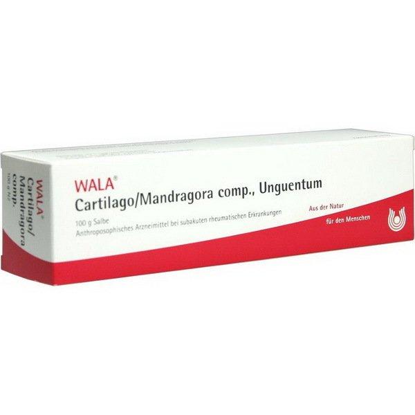 CARTILAGO/MANDRA COMP UNGT 100 G